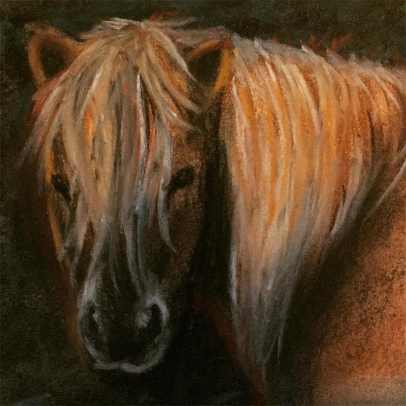 Shetland Pony Furry Mug of the Week